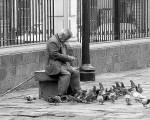 people, old man, feeding pigeons, Lima Peru
