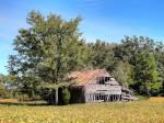 rustic barn, rustic, barn, architecture, farm