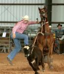 Western, rodeo, cowboy, calf rope, Florida
