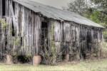 rustic, ranch,
