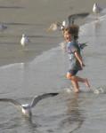 people, child, beach, Florida