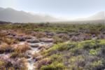 Desert landscape, dust storm, anza borega