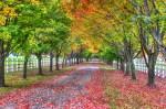 AutumnDrive