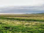 landscape, scenery, open range, grass land, California