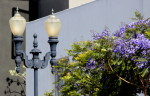 street lamp, purples flowers