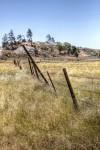 grasslands, landscape, ranch, fences