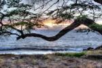 OahuSunset