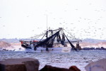 Shrimp boat, Florida, Mayport Florida