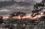 Sunset, marsh, twilight, Florida